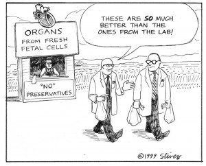1999-05-organs-from-farm-st